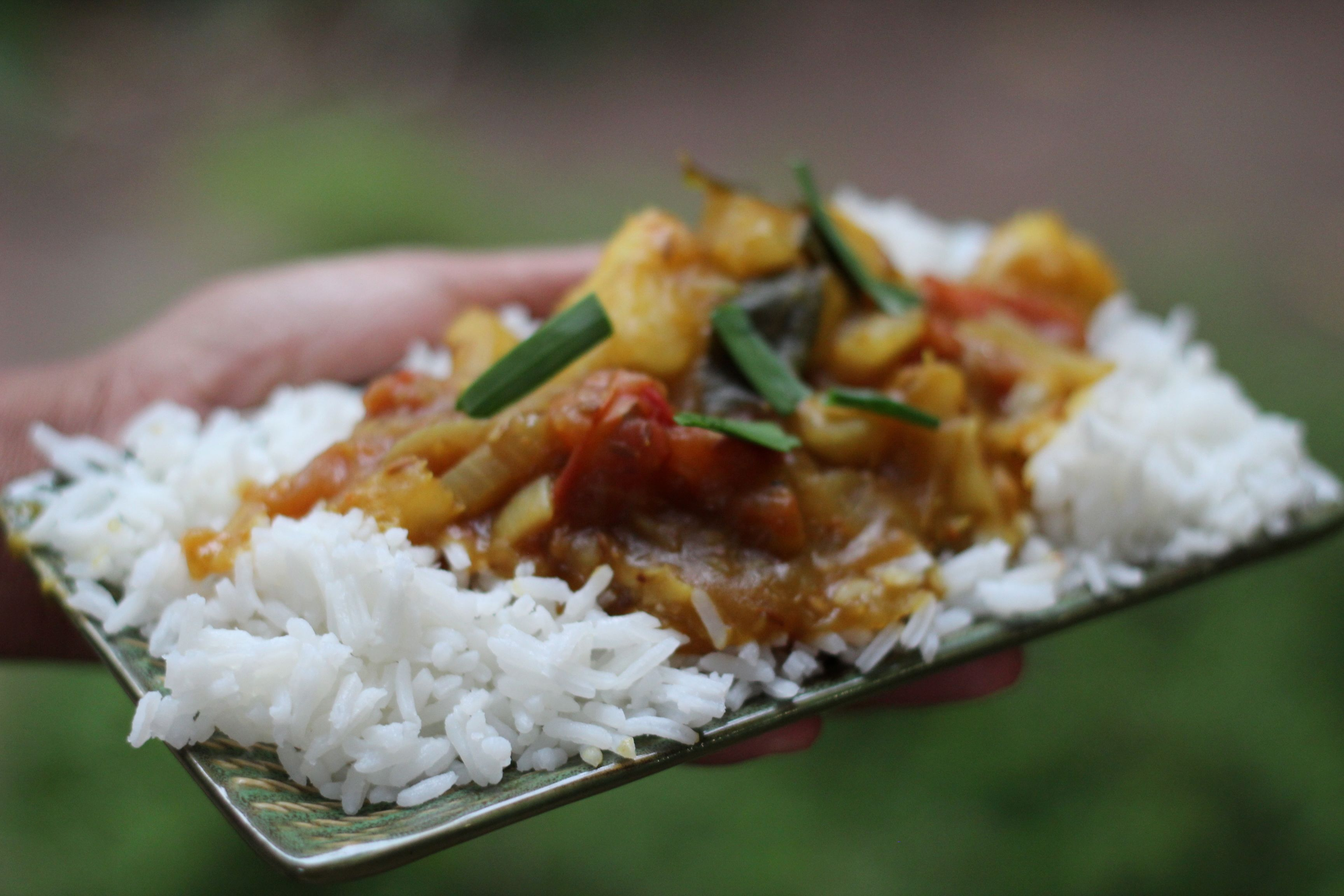 Indian roots a cassava curry gulp nt for pdf version of bhavinis recipe click here forumfinder Choice Image