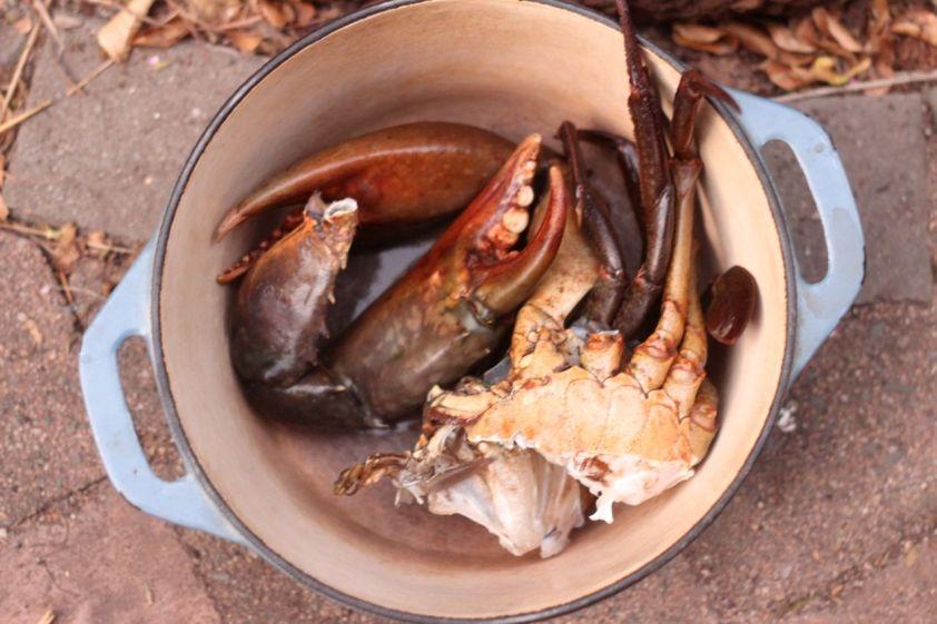 cut crab in pot
