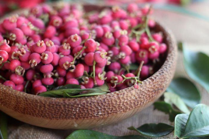Syzygium fibrosum bowl